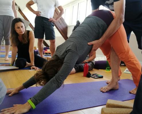 Ayur Yogatherapie Ausbildung - erst das Fine tunig in einer Asana bringt eine nachhaltige Veränderung in der tiefen Struktur