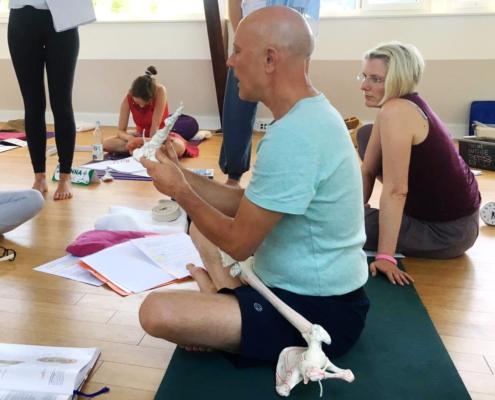 Ayur Yogatherapie Anatomie des Fußes