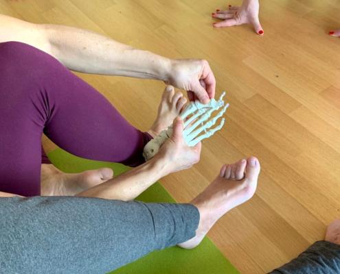Ayur Yogatherapie Ausbildung - Spiraldynamik lernen und verstehen - von Kopf bis Fuß